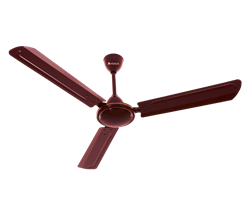 Picture of Venus FAN 48 Matrix Ivory / White / Brown