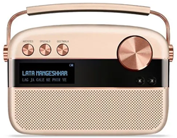 Picture of Saregama Carvaan Gold Hindi