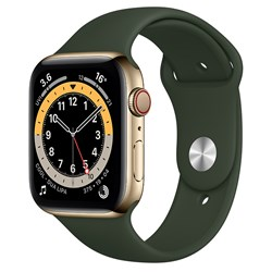 Picture of Apple Watch Series 6 GPS Plus Cellular 44mm Gold Ss Case With Cyprus Green Sport Band Regular