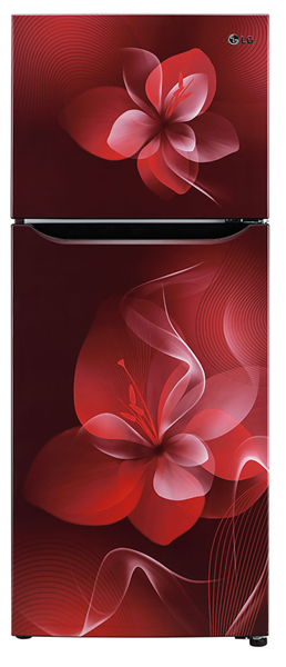 Picture of LG 260 Litres GLN292BSDY Frost Free Refrigerator
