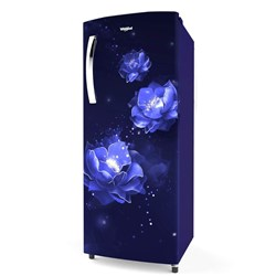 Picture of Whirlpool Fridge 260 IMPRO Plus Premier 3S Sapphire ABYSS